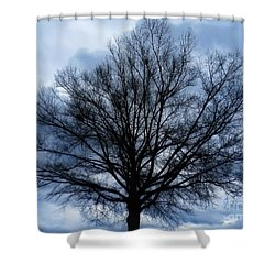 Just A Gray Blue Day Shower Curtain