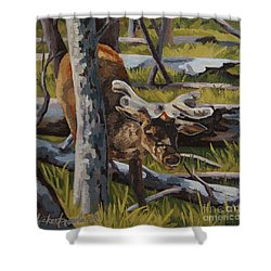 Shower Curtain featuring the painting Just A Peek by Erin Fickert-Rowland