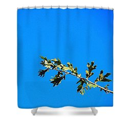 Just A Perfect #sunny #noclouds Shower Curtain