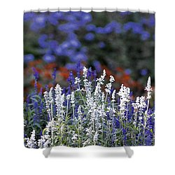Just Before Fall Shower Curtain