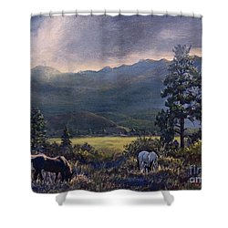 Just Before The Rain Shower Curtain