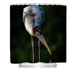 Just Browsing Shower Curtain