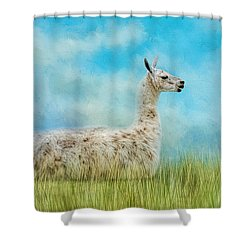 Just Chillin Shower Curtain by Jai Johnson