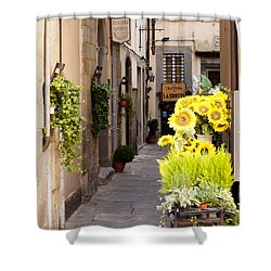 Just Down The Road Shower Curtain by Rae Tucker
