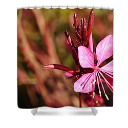 Just In Pink Shower Curtain