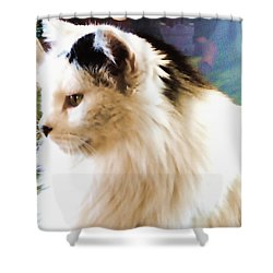 Just Jenny Shower Curtain