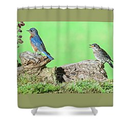 Just One More Worm Shower Curtain
