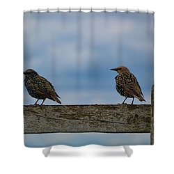 Just Resting Shower Curtain