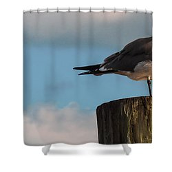 Just Standing On The Dock Shower Curtain by Phillip Burrow