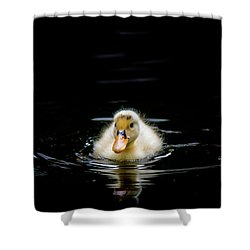 Just Swimming Shower Curtain