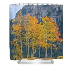 Just The Ten Of Us Shower Curtain by David Chandler
