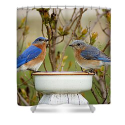 Just The Two Of Us Shower Curtain by Bill Pevlor