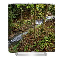 Shower Curtain featuring the photograph Just To Be by Dale Kincaid