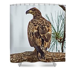 Juvenile Shower Curtain