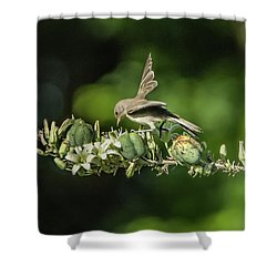 Juvenile Verdin 1870 Shower Curtain by Tam Ryan
