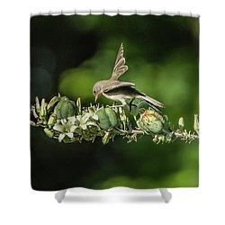 Juvenile Verdin 1870 Shower Curtain