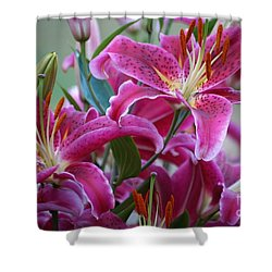 K And D Lilly 4 Shower Curtain