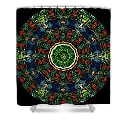Shower Curtain featuring the digital art Ka061516 by David Lane