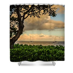 Shower Curtain featuring the photograph Ka'anapali Plumeria Tree by Kelly Wade