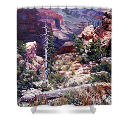 Kaibab Trail Shower Curtain by Donald Maier