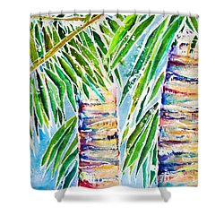 Kaimana Beach Shower Curtain by Julie Kerns Schaper - Printscapes