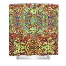 Kaleid Abstract Tapestry Shower Curtain