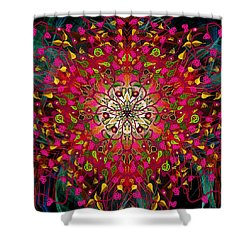 Kaleidoflower#7 Shower Curtain