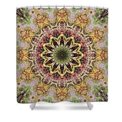 Kaleidoscope 102 Shower Curtain