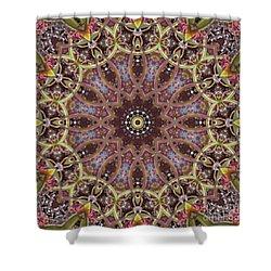 Kaleidoscope 104 Shower Curtain