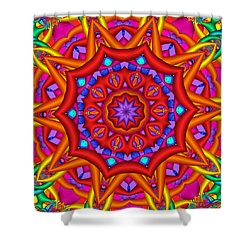 Kaleidoscope Flower 02 Shower Curtain