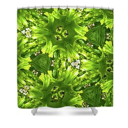 Kaleidoscope Flower Shower Curtain by Julia Wilcox