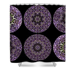 Kaleidoscope Sampler Shower Curtain by Teresa Mucha
