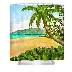 Kamaole Beach Maui Hawaii Art Painting #349 Shower Curtain by Donald k Hall