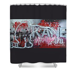 Shower Curtain featuring the painting Kaner 88 by Melissa Goodrich