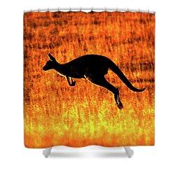 Kangaroo Sunset Shower Curtain by Bruce J Robinson
