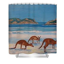 Kangaroos On The Beach Shower Curtain
