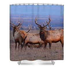 Kansas Elk Shower Curtain