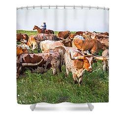 Kansas Flint Hills Longhorns Shower Curtain