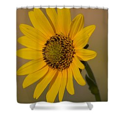 Kansas Flower One Shower Curtain by Carolina Liechtenstein