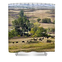 Kansas Plains  Shower Curtain