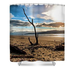 Kapiti Sunset Shower Curtain