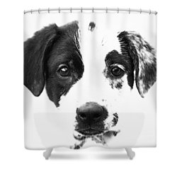 Karma Shower Curtain by Amanda Barcon