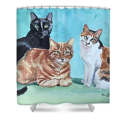 Kates's Cats Shower Curtain