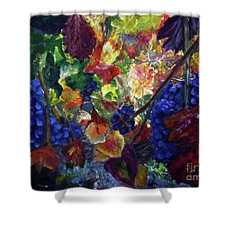 Katy's Grapes Shower Curtain by Donna Walsh