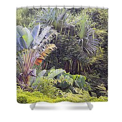 Kauai Jungle Shower Curtain