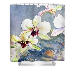 Kauai Orchid Festival Shower Curtain by Marionette Taboniar
