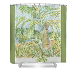 Kauai Palms Shower Curtain