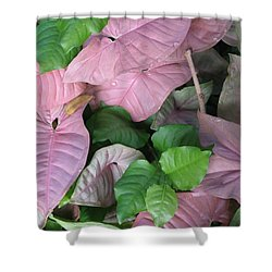 Shower Curtain featuring the photograph Kauai  Pinks by Carol Sweetwood