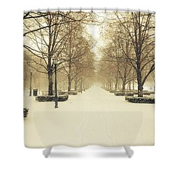 Kc Snow With Parisian Flare Shower Curtain