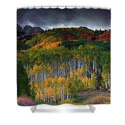 Kebler's Coat Of Many Colors Shower Curtain